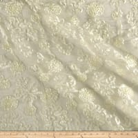 Embroidered Luxury Ribbon Organza Ivory