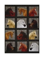 "Thoroughbreds Thoroughbreds 29.5"" Panel Multi"
