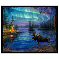 "Northern Lights 36"" Panel Black"