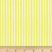 Marguerite Stripe Lime