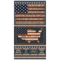 "Land That I Love Americana 24"" Panel Multi"