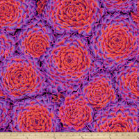 Kaffe Fassett Collective Succulent Red