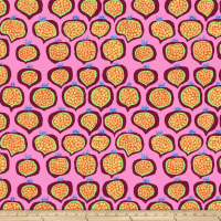 Kaffee Fassett Collective Pomegranate Pink