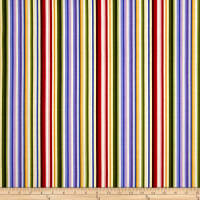 A Wildflower Meadow Rainbow Stripe Multi