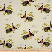 Birch Organic Charley Harper Bird Architects Baltimore Oriole
