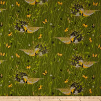 Birch Organic Charley Harper Bird Architects Eastern Meadowlark