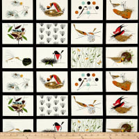 Birch Organic Charley Harper Bird Architects Bird Architects Patch