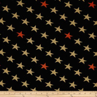 Defenders Of Freedom Stars Black/Multi