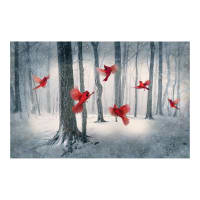 "Hoffman Digital Call Of The Wild 29"" Cardinal Panel Cardinal"