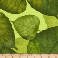 "Timeless Treasures 108"" Wide Back Leaves Green"