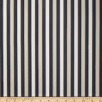 Duralee Outdoor DW16301 Stripe Blue/Brown Twill