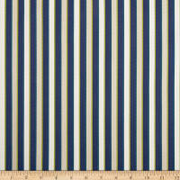 Duralee Outdoor DW16301 Stripe Navy Twill