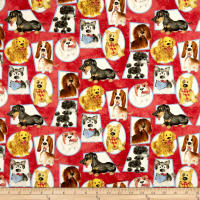 Puppy Pals Dogs In Frames Red