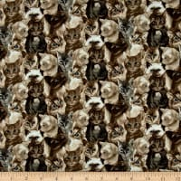 My Pet Family Kitten Collage Taupe