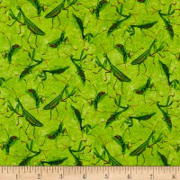 Frolicking Fields Tossed Mantises Lime/Multi