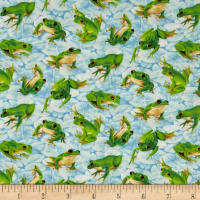 Frolicking Fields Tossed Frogs Light Blue/Multi