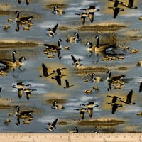 QT Fabrics Flying Geese Geese Lake Scenic Chambray