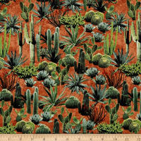 Adobe Cacti Clay