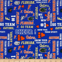 NCAA University of Florida Metallic Glitter Allover