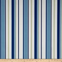 Terrasol Indoor/Outdoor Comet Stripe Ink
