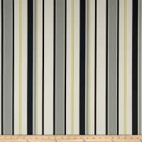 Terrasol Indoor/Outdoor Comet Stripe Platinum