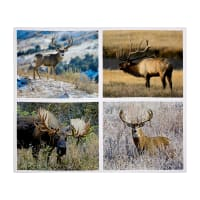 "Kings Camo Pillow Panel 43"" X 36"""
