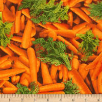 Timeless Treasures Veggie Bowl Carrots Orange