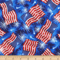 Timeless Treasures Space Rock USA Flags Blue