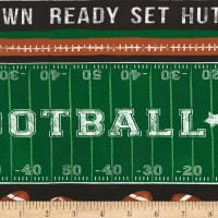 Timeless Treasures Football Family Rules Football Stripe Green