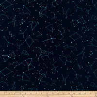Paintbrush Studio Otter Romp Constellations Navy