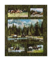 "Maywood Studio High Country Crossing High Country 24"" Panel Green"