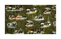 Maywood Studio High Country Crossing High Country Scenes Green