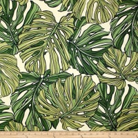 Trans-Pacific Textiles Monstera Canvas Green/Cream
