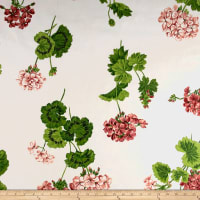 Thibaut Geraniums Cream