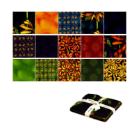 "Clothworks Follow The Sun 5"" Squares 42 Pcs Multi"