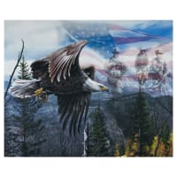 "Free Like An Eagle Panel (35.5"" x 44"") Multi"