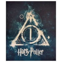 "Camelot Wizarding World Harry Potter Deathly Hallows 36"" Panel in Dark Teal"