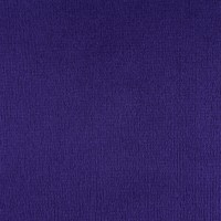 Shannon Minky Solid Cuddle 3 Extra Wide Eggplant