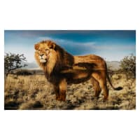 "Hoffman Digital Wild Kingdom 28"" Panel Lion"