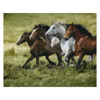 "Hoffman Wide Open Spaces 43"" Horse Panel Digital Moss"