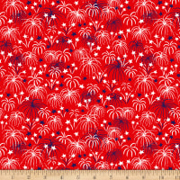 Patriotic Parade Fireworks Red
