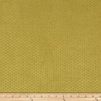 Morgan Fabrics Velvet Check Sprout