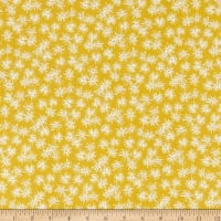 FIGO  Mountain Meadow Star Flowers Yellow