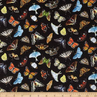 Elizabeth's Studio Butterflies and Moths Packed Black