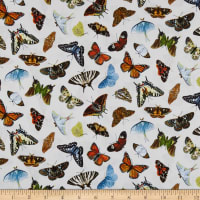 Elizabeth's Studio Butterflies and Moths Packed Cream