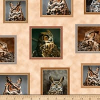 QT Fabrics Nocturnal Wonders Great Horned Owls Small Patches Tan