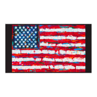 "Kaufman Patriots Digital Flag 24"" Panel Americana"