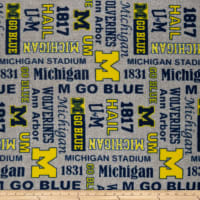 NCAA Fleece Michigan Heather Verbiage