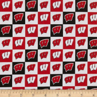 NCAA Wisconsin Badgers NCAA Check