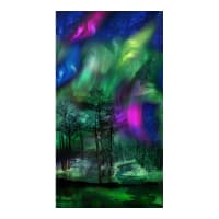 "Timeless Treasures Northern Lights 24"" Panel Multi"